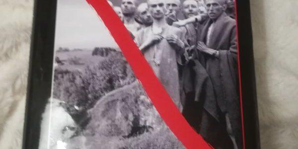 Mauthausen: Ďábel vlíbezné krajině – recenze