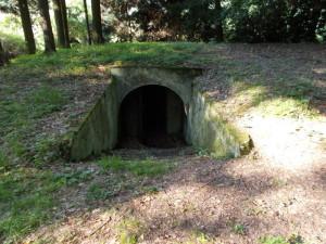 tajemné dveře do podzemí...hned jsem tam vlezla...